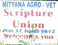 Adult Guide in Mityana